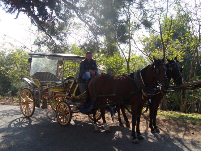 Άμαξα στη Χάλκη