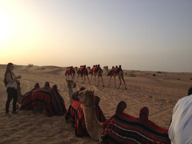 Βόλτα με τις καμήλες!